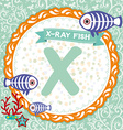 ABC animals X is X-ray fish Childrens english vector image