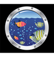 porthole and fishes vector image
