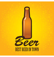 bottle of beer vector image