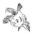Hand sketch fish vector image