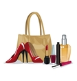 set beauty makeup cosmetic accesory wo fashion vector image