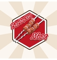 meat and skewers vector image