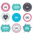 Winner pets laurel wreath sign icon vector image