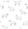 seamless pattern with dogs of various breeds hand vector image