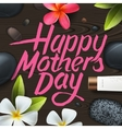 Happy mothers day Spa therapy vector image