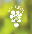Natural food emblem vector image