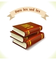 Law icon legal books vector image