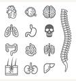 Human internal organs detailed icons set vector image
