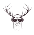 deer in music headphones vector image