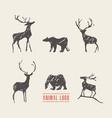 drawn deers bears logotype vector image