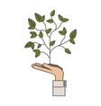 Plant over hand design vector image