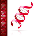 Red dna vector image
