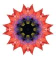 poppy Flower crystal vector image