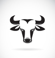 Bull haed vector image