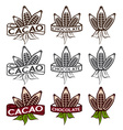 cacao beans with leaves labels set vector image