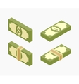 Isometric bundles of paper money vector image