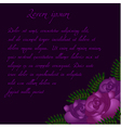 Purple roses background pattern vector image