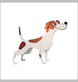 cheerful dog has cracked on a white background vector image