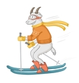 goat skiing isolated object vector image
