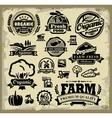 organic harvest labels vector image
