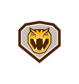 Angry Horned Viper Crest Retro vector image vector image