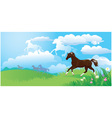 landscape with horses vector image