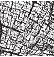 Skin Texture vector image