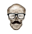 Hipster skull with sunglasses and mustache vector image vector image