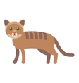cat flat icon vector image