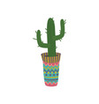 cactus in a colorful pot with mexican ornament vector image