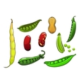Cartoon fresh legumes and vegetables vector image
