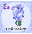 Flashcard of E is for elephant vector image