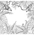 tropical plants and birds square frame vector image