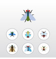 flat icon housefly set of buzz tiny mosquito and vector image