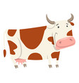 cute cow farm animal character vector image