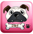 Little pug on square badge vector image