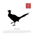 black silhouette of a japanese green pheasant vector image