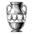 greek vase amphora vector image