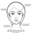female face information poster design vector image