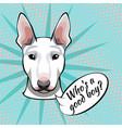 bull terrier dog who s a good boy vector image