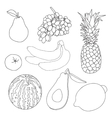 Fruits for coloring book vector image