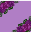 Seamless pattern with purple roses vector image