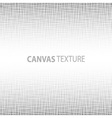 Canvas texture vector image