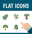 flat icon natural set of baobab garden forest vector image