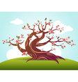 blossom cartoon vector image vector image