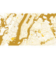 new york city golden map vector image