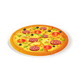 pizza traditional vector image