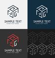 Thin Line Design Template Logotype Cube maze vector image