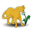 Cat smells flower vector image