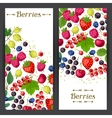Nature banners design with berries vector image